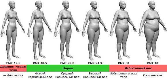 Абдоминальный тип ожирения