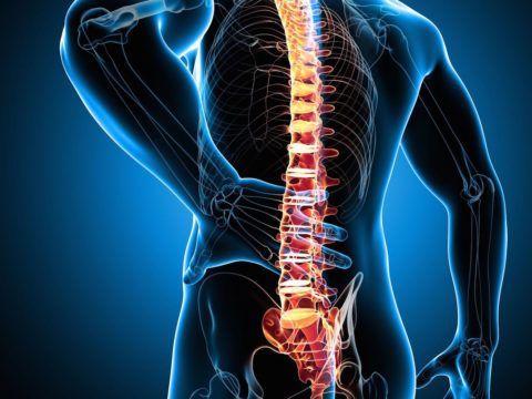 Человек с больной спиной не может полноценно работать