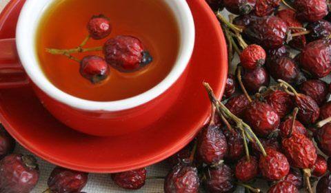 Для утоления жажды и получения важных витаминов можно пить отвар из шиповника.