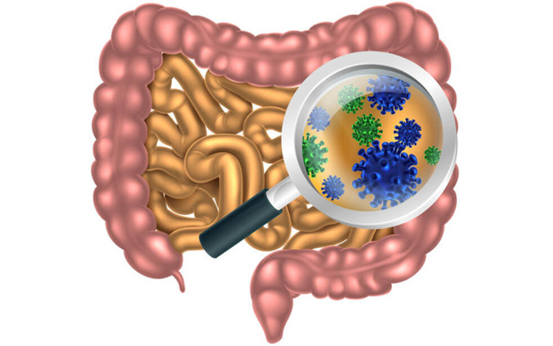 Лактулоза от дисбактериоза