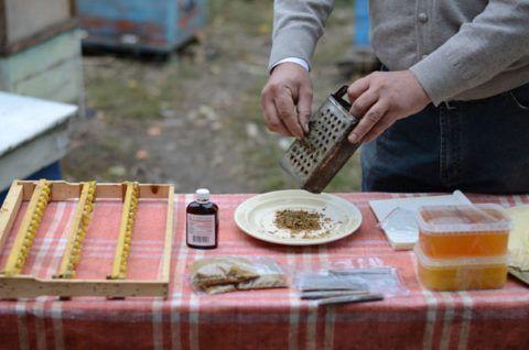 Использование продуктов пчеловодства для лечения бурсита
