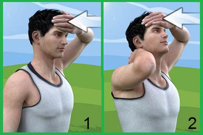Изометрия для шеи