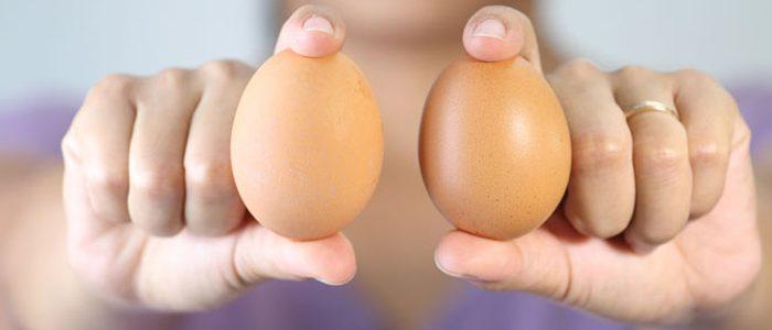 Куриные яйца от давления