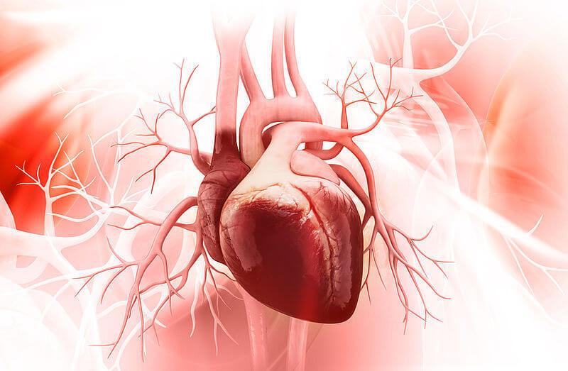 Проблемы в работе сердца и сосудов