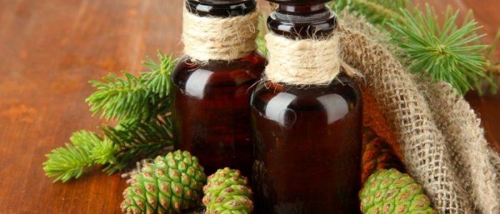 Сосновые шишки на спирту от давления