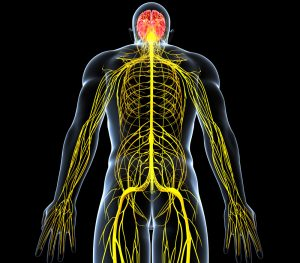 Причины и лечение симптоматической артериальной гипертензии
