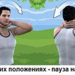 «Неваляшка»: в стороны (1) и вперёд-назад (2)