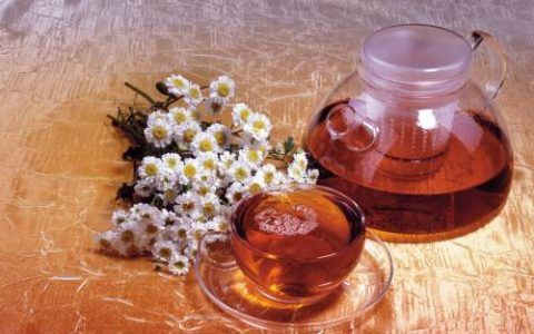Отвары и настои целебных растений помогут в борьбе с недугом