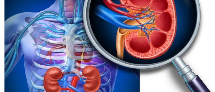 Симптомы и лечение почечного давления
