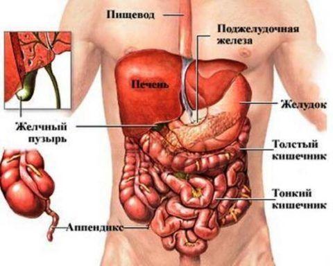 Поражение затрагивает даже внутренние органы