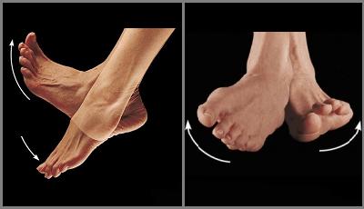 Разминка голеностопных суставов