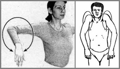 Разминка локтевых и плечевых суставов