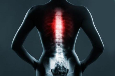 Самые часто встречающиеся гемангиомы в позвоночнике локализуются в его грудном отделе