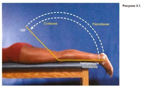 Сгибание-разгибание колена помогает разработать соединение после иммобилизации.