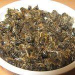 Собирают погибших пчел, очищают от мусора и просушивают