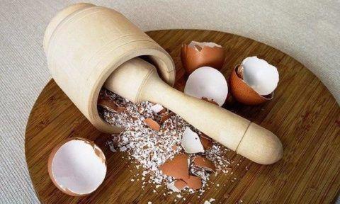 Толченая яичная скорлупа помогает недопустить образования дефицита Са в организме.