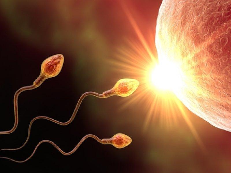 Уреаплазма и зачатие